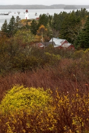 In-and-Around-Eastport-18