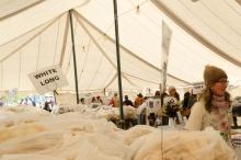 in the fleece tent
