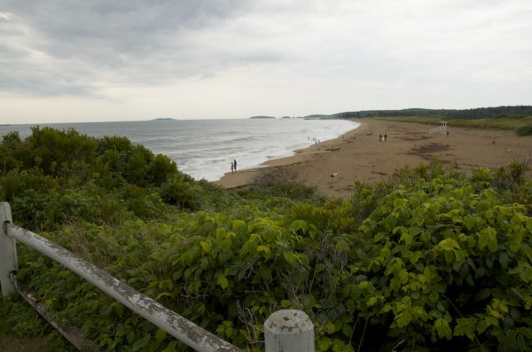 Reid State Park beach.
